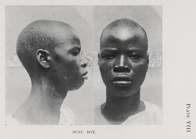Plate VIII from N. W. Thomas's Anthropological Report on Sierra Leone. The caption reads 'Susu Boy'.