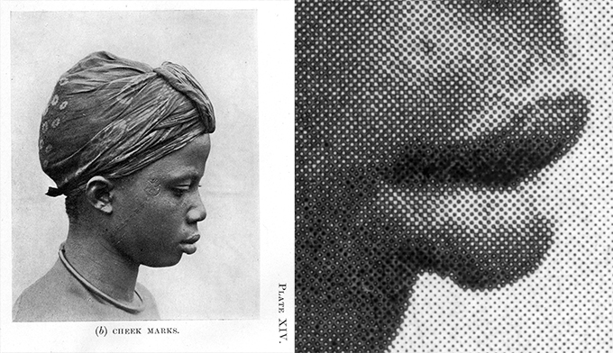 Northcote Thomas Igbo Report Part 1, Plate XIV, halftone printing