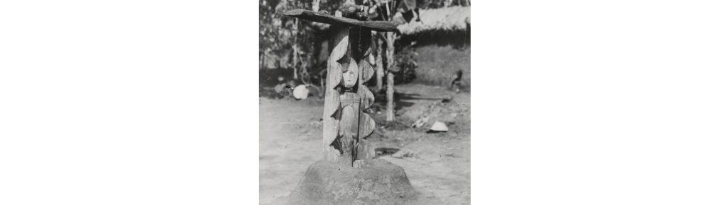 Ugonna Umeike, Renewal - Northcote Thomas reference