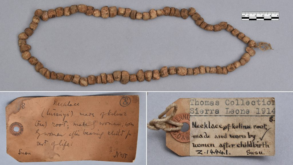 Susu necklace and labels collected by Northcote Thomas, Sierra Leone, 1914