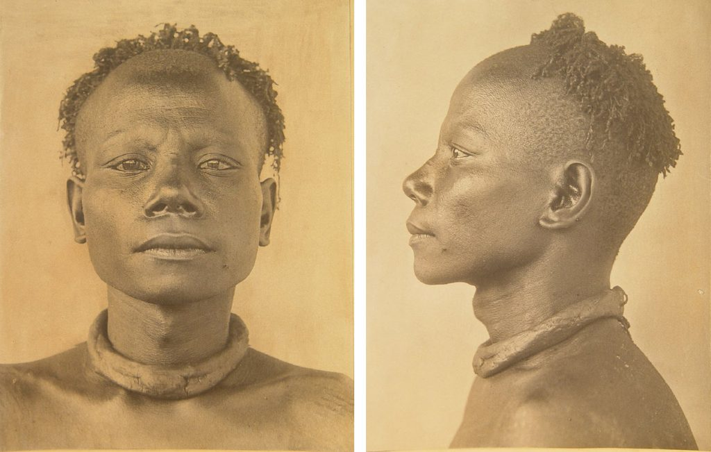 Physical Type photograph of Riala, Heads of the Andamanese, M. V. Portman, British Museum